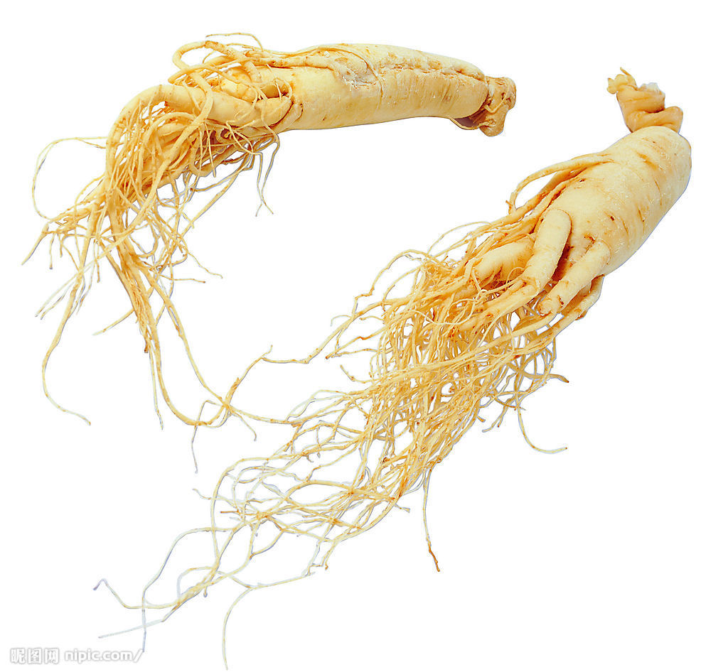 Ginseng seems to be everywhere at the moment…. | Realize Beauty