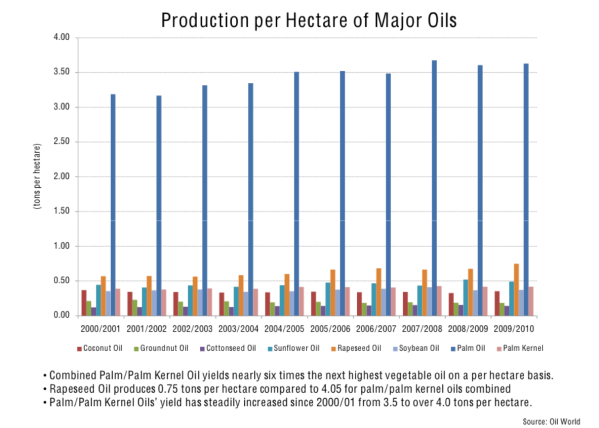oil production per hectare