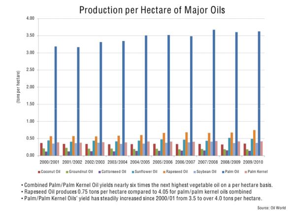 oil production per hectare