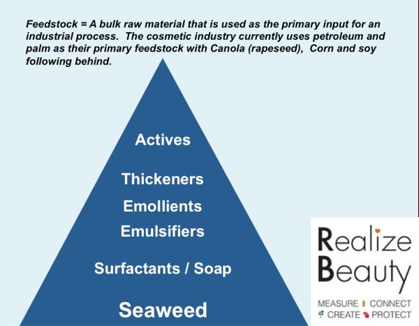 feedstock pyramid
