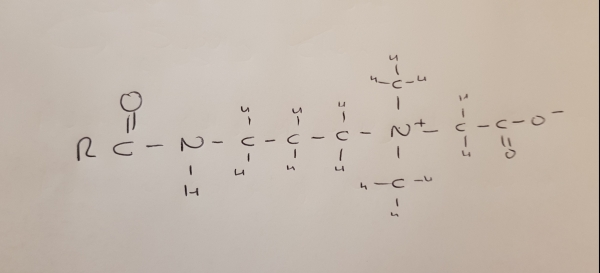 Cocamidopropyl-Betaine.jpg