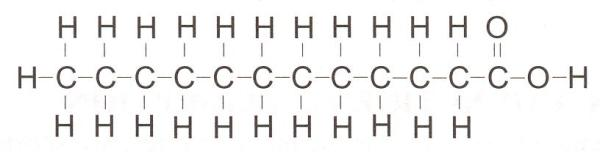 Typical Fatty Acid Lauric