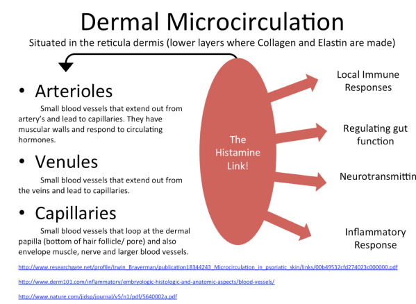 cellulite-dermal-microcirculation